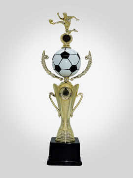 Metal Trophy   Award